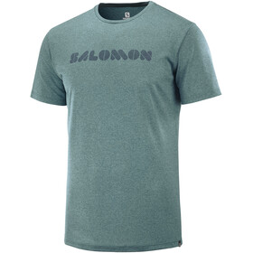 Salomon Agile Graphic Tee Men, green gab